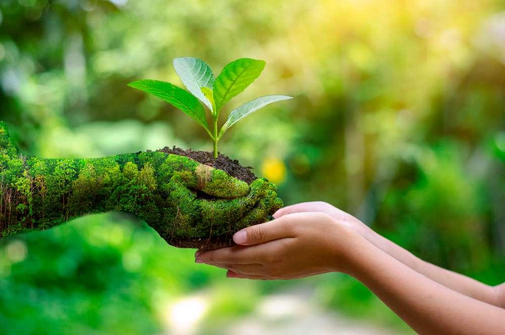 respetar los recursos del planeta